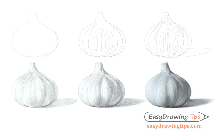 How to draw garlic step by step