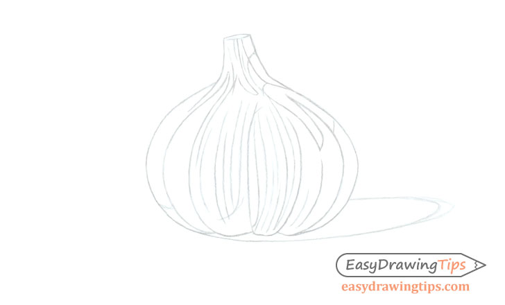 Garlic line drawing