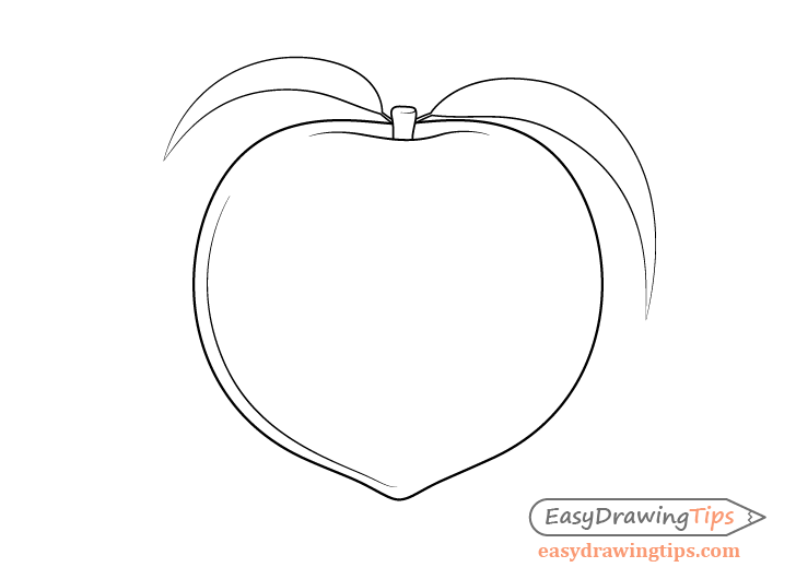 Peach leaves drawing