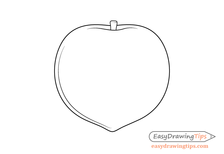 Peach stem drawing