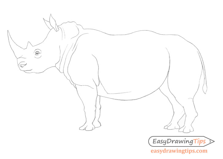 Rhinoceros line drawing
