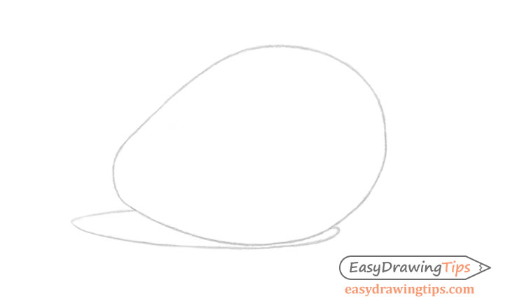 Avocado line drawing