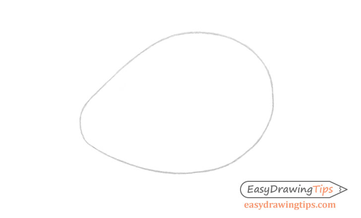 Avocado outline drawing