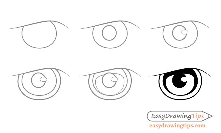 Eagle eye step by step drawing