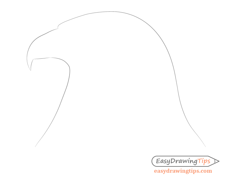 Eagle head outline drawing