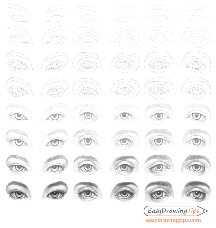 Eyes different types drawing step by step