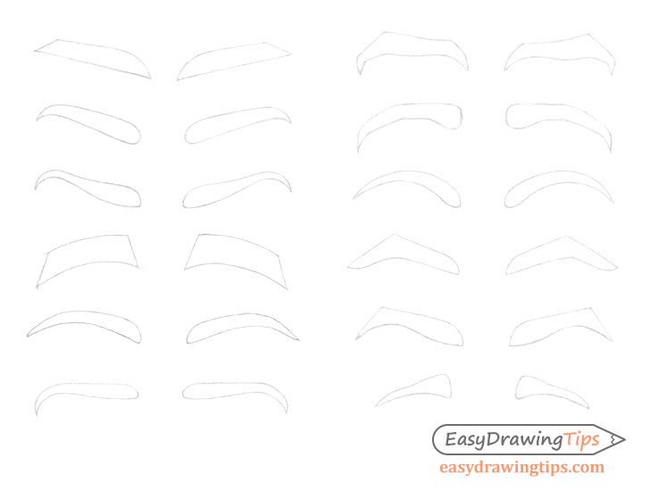 Eyebrows line drawing