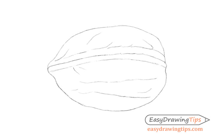 Walnut line drawing