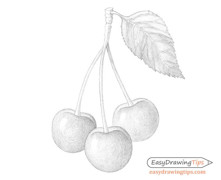Cherries basic shading
