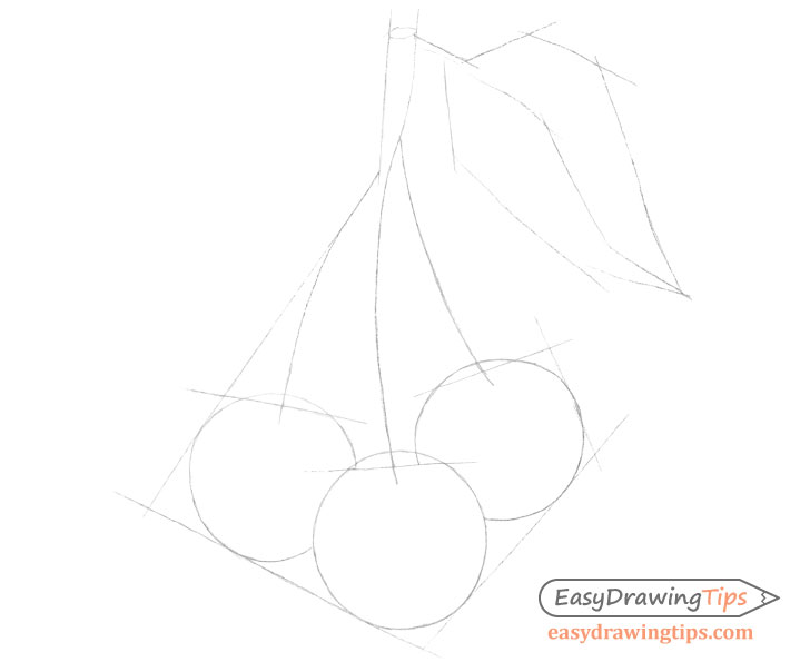 Cherries construction drawing