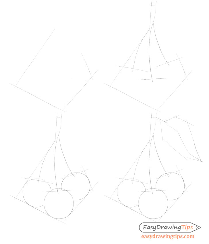 Cherries construction drawing step by step