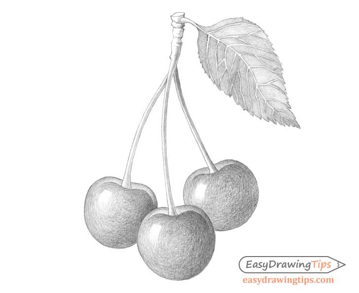Cherries shading
