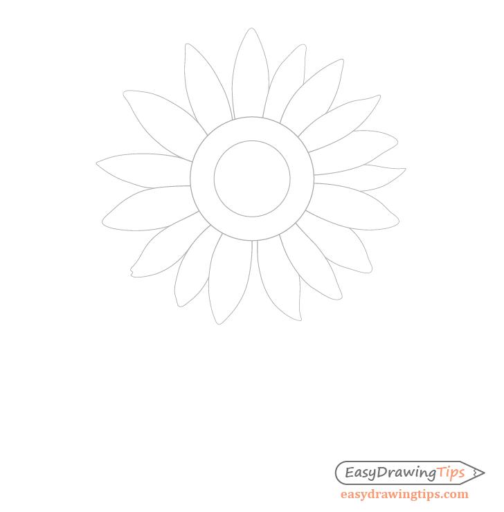 Sunflower petals drawing