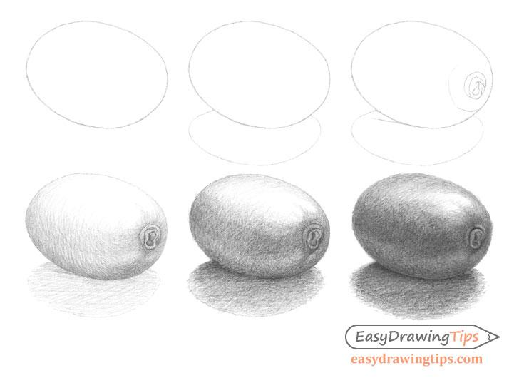 Kiwi drawing step by step